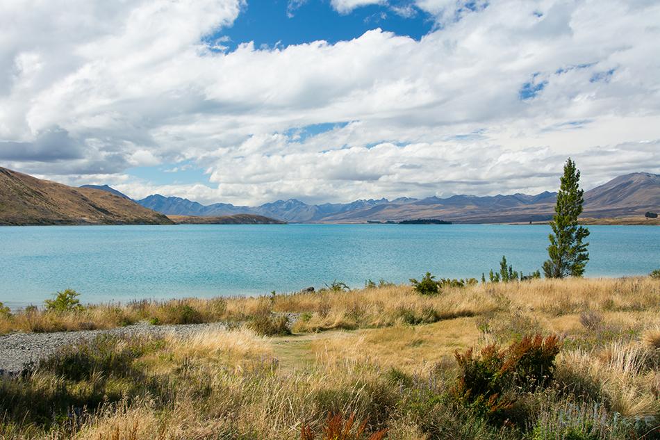 Lake, Tekapo, Otago, New, Zealand, Aotearoa, Kaido Rummel