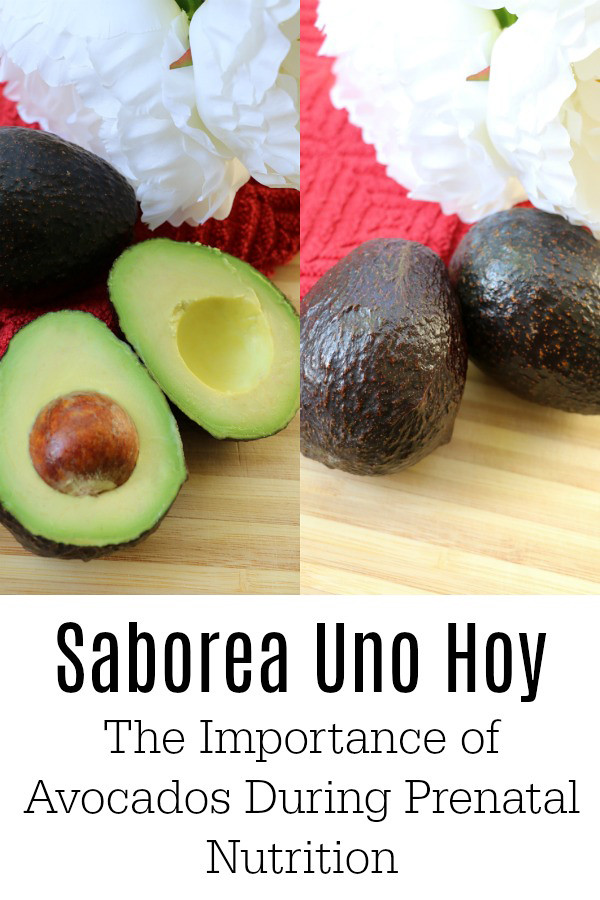 The Different Nutritional Benefits of Avocado During Pregnancy