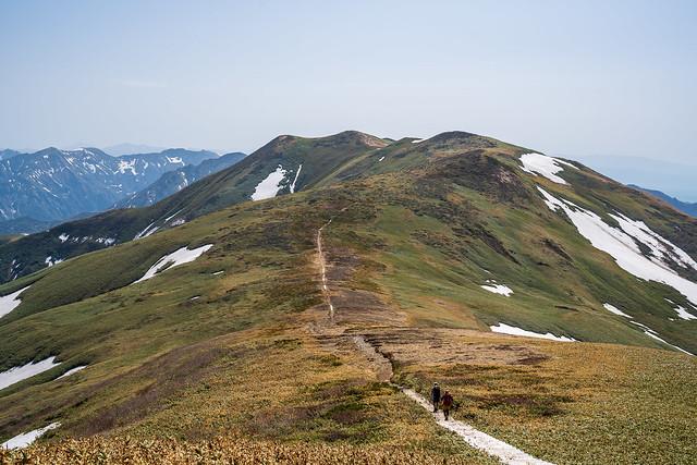 仙ノ倉山への稜線@平標山