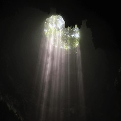 HEAVEN LIGHT!! 【浪遊旅人】https://ift.tt/1zmJ36B #backpackerjim #underground #cave #forest #vertical #limestone #grubug #jomblang #yogyakarta #indonesia