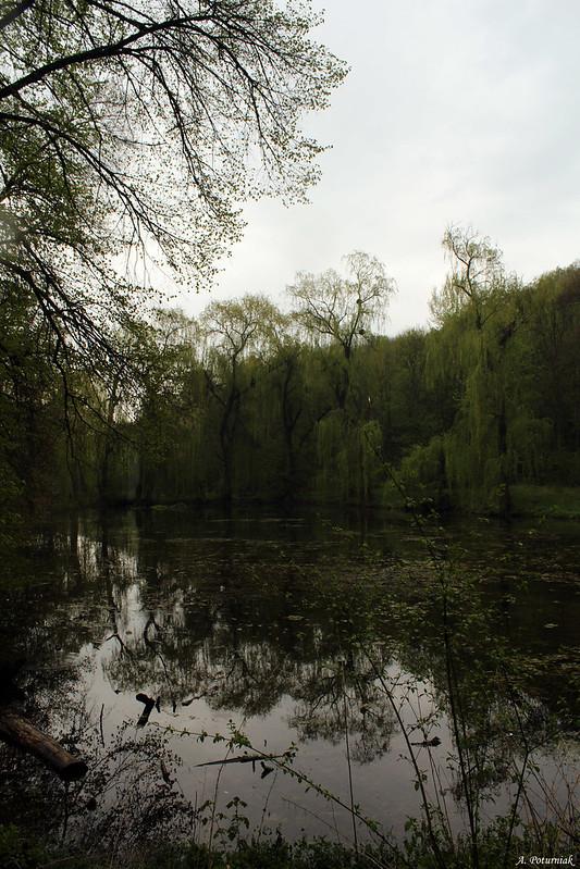 Малієвецький парк