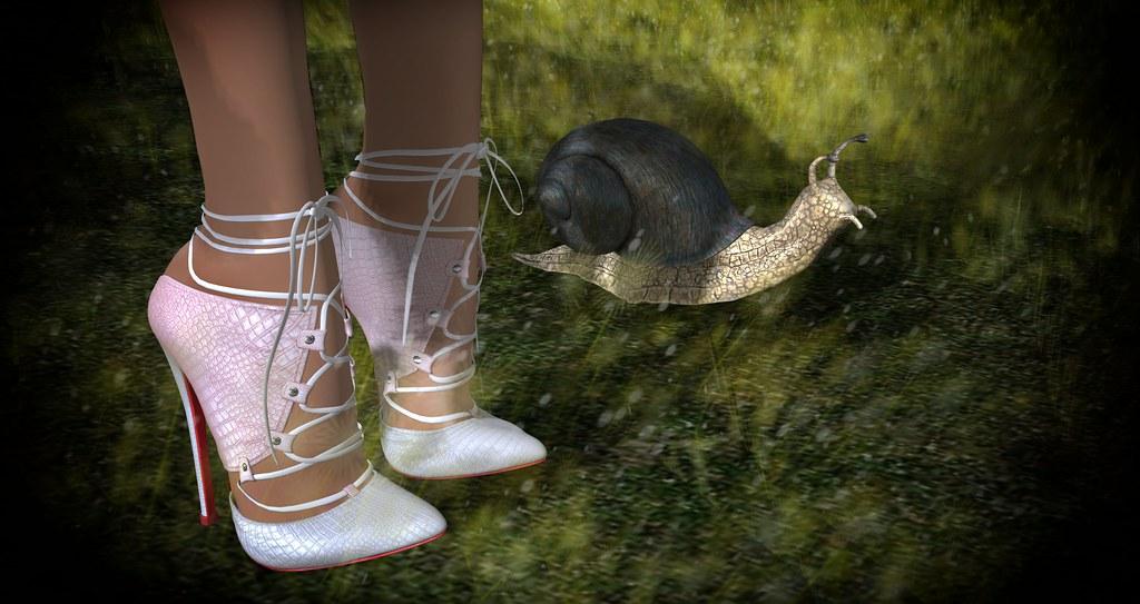 Lacosty Heels