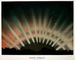 "Aurora&nbsp;Borealis&nbsp;from the Trouvelot<br />astronomical drawings (1881-1882) by <a href=""https://www.rawpixel.com/search/etienne%20leopold%20trouvelot?&amp;page=1"">E. L. Trouvelot</a> (1827-1895)"