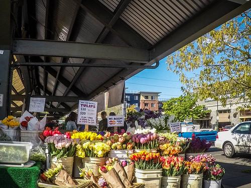 Bellingham Farmers Market-016