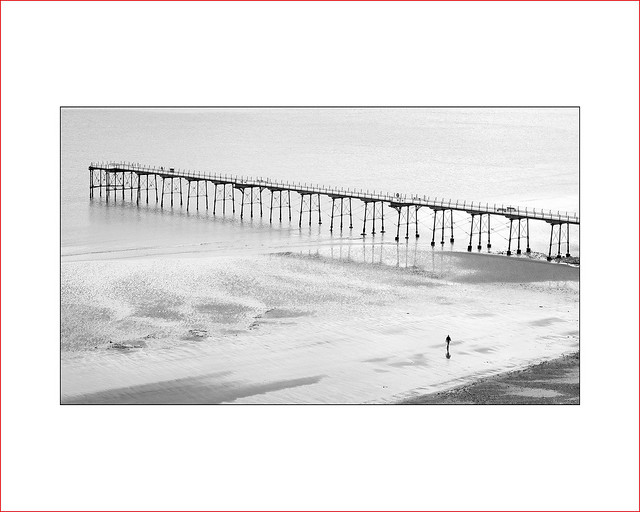lonesome  |  beach, Fujifilm X-Pro1, XF60mmF2.4 R Macro
