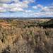 Birnam Hill