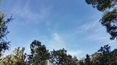 today in sky