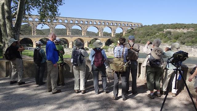 birders birding Pont du Gard