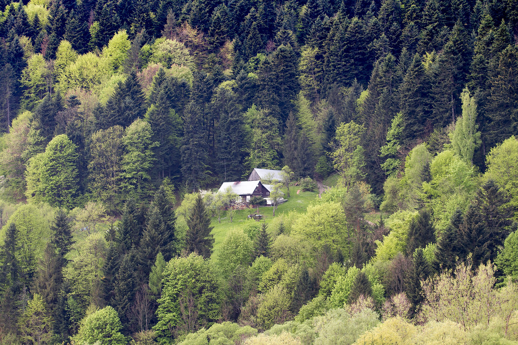 House In Mountains - Pieniny - Poland
