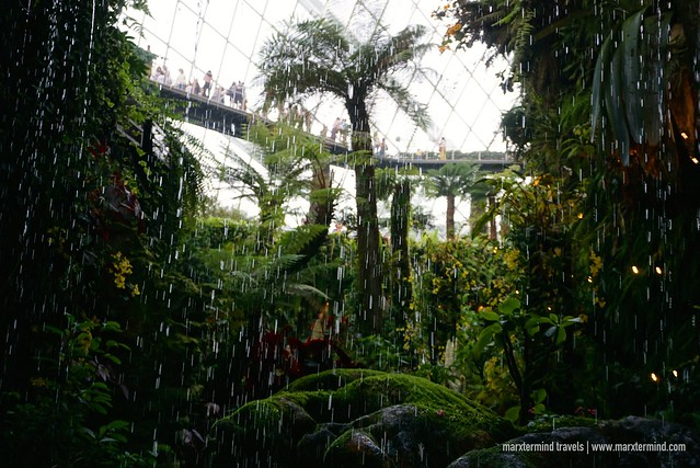 Inside Gardens by the Bay Cloud Forest