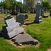 Irvine Old Parish Churchyard (432)