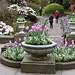 Tulips Planter