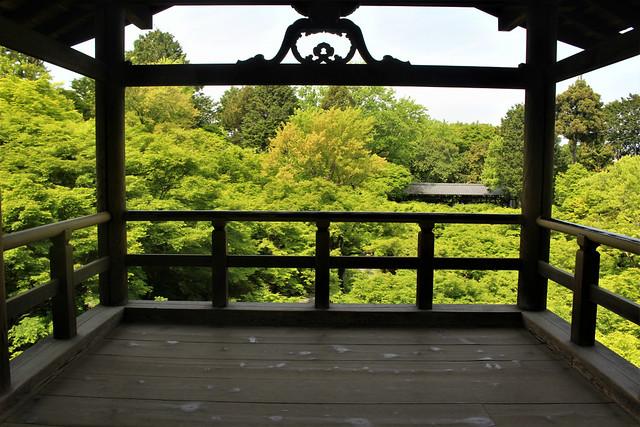 tofukuji-tuutenkyo006