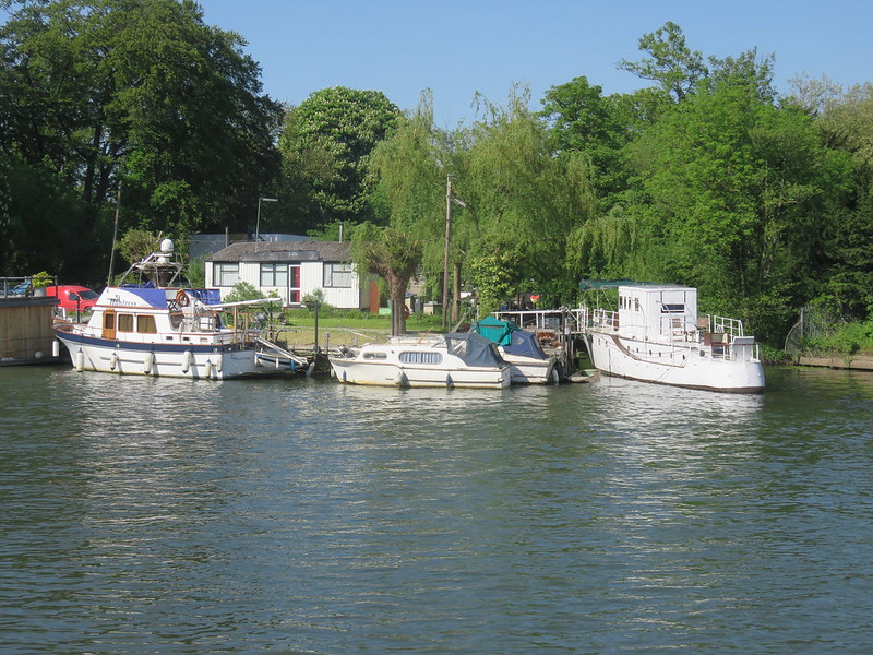 Thames Path - Weybridge to Windsor