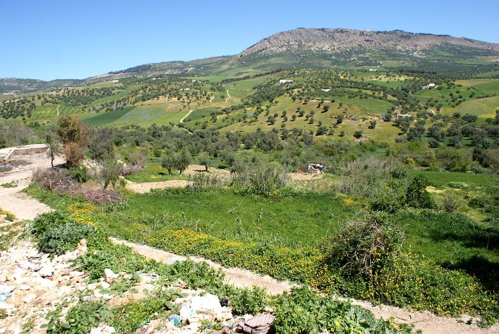 La colline Djbel Tghat et les paysages verdoyant au nord de Fès.