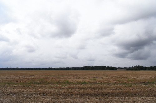 20100830 105 0110 Jakobus Feld Wald Wolken