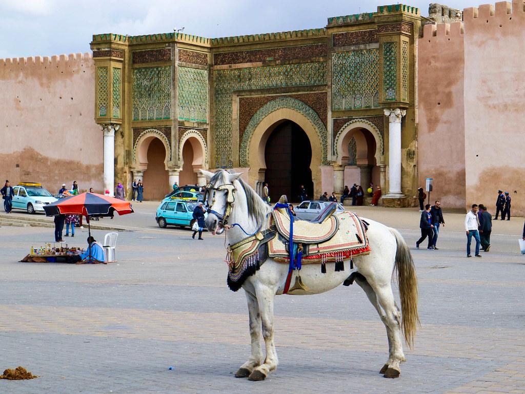 Puerta Bab al-Mansour