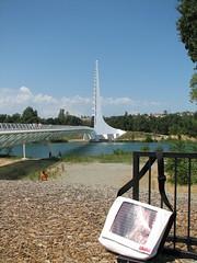Sakku #17 and the Sundial Bridge