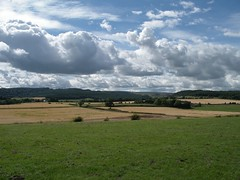 Stirling 2005