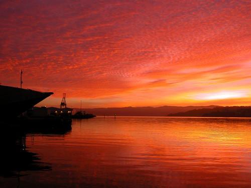 new newzealand 2004 sunrise harbor harbour zealand nz wellington february onlocation kiwifrenzy