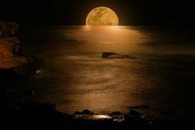 Moonlight of Gold