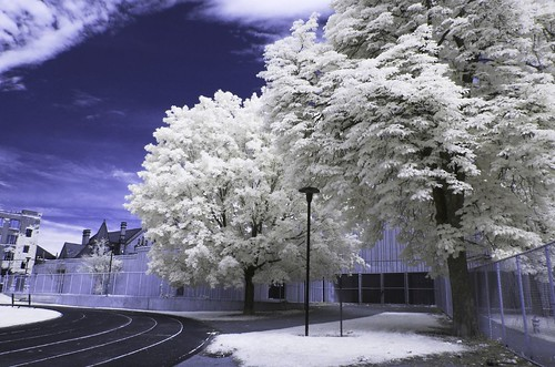 Central Tech Track - Colour IR