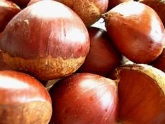 shallot(0.0), plant(0.0), chestnut(1.0), nuts & seeds(1.0), vegetable(1.0), hazelnut(1.0), produce(1.0), food(1.0),