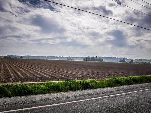 Samish Flats Fields-001