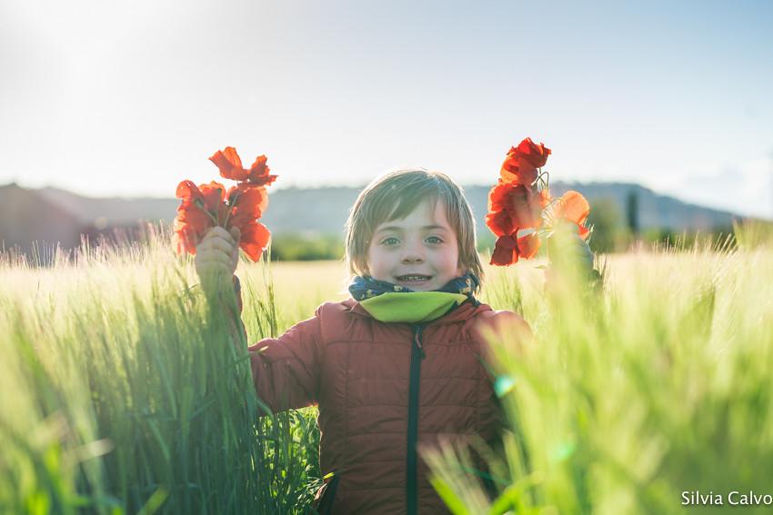 Alegria de campo