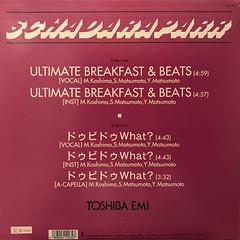 スチャダラパー:ULTIMATE BREAKFAST & BEATS(JACKET B)