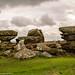 Brimham Rocks by jackharrybill