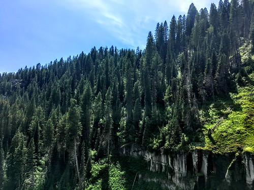 idaho cariboutargheenationalforest water waterfall nature trees green forest henrysfork outside wilderness hike sightseeing