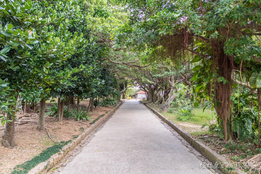 日本沖繩玉陵,琉球王國皇室長眠的墓園,世界遺產之一的史蹟,莊嚴、寧靜的一站