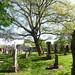 Irvine Old Parish Churchyard (336)