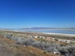 scenery at antelope island