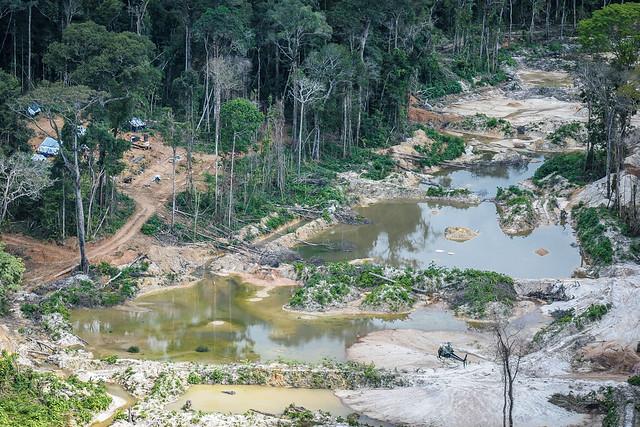 Resultado de imagem para Garimpo ilegal está desmatando e contaminando rio em terra indígena