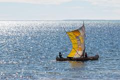 Madagascar 2018 - Camera II - 01481.jpg