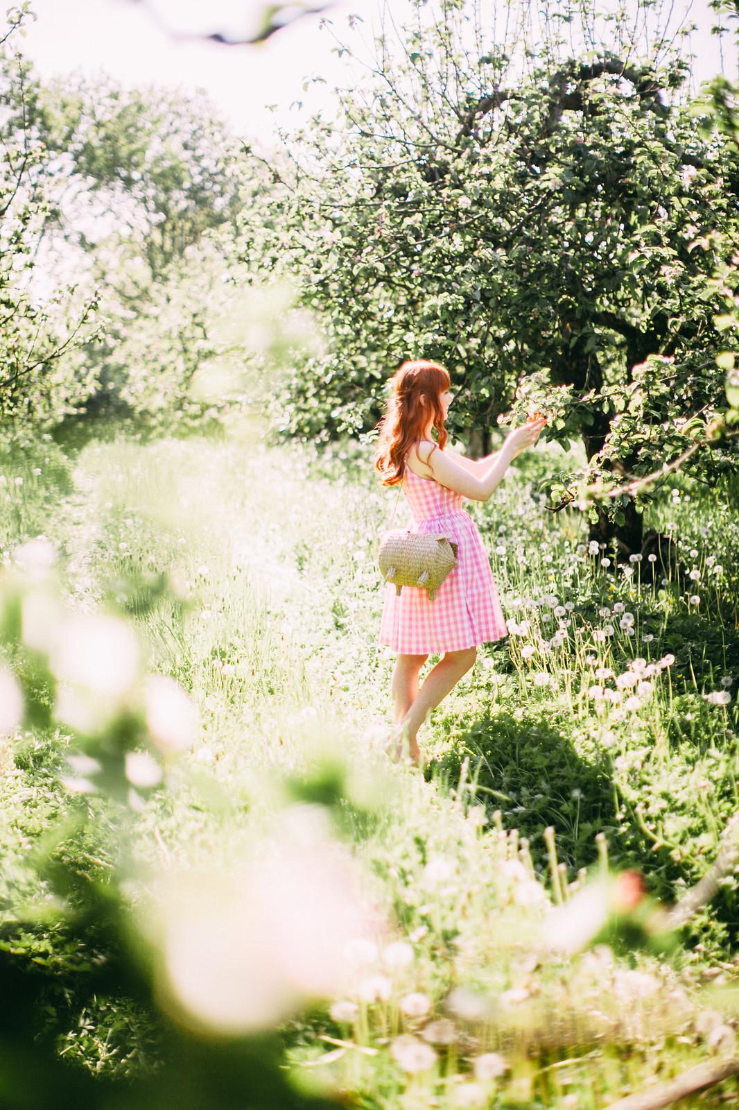 wildorchard-23