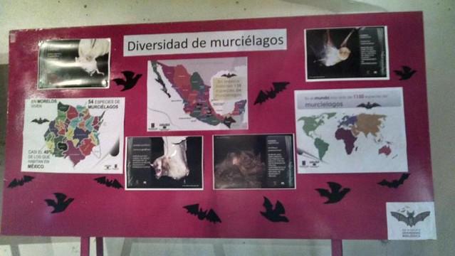 5ta Semana de la Diversidad Biológica
