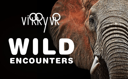 virry-wild-encounters-two-column-01-ps4-eu-10apr18