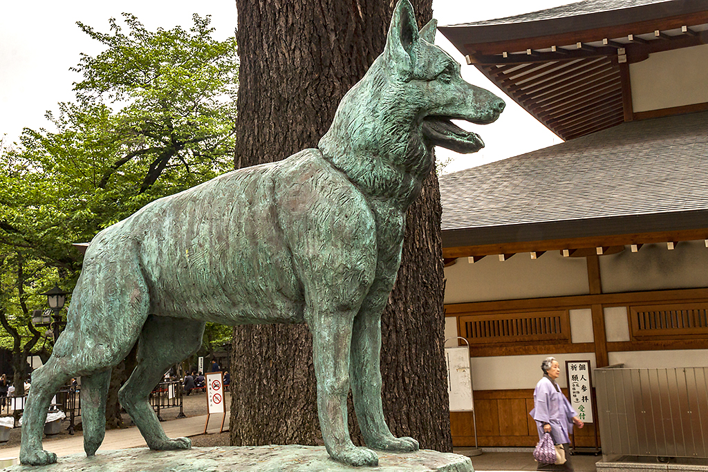 Memorial to military dogs killed in action--Tokyo