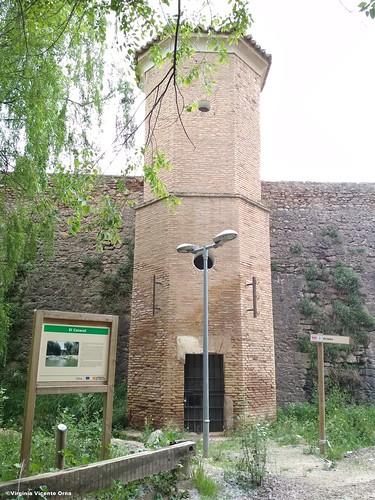 torre caracol grisen