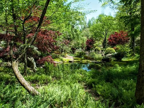 gardens flowers gibbsgarden nature landscapes garden