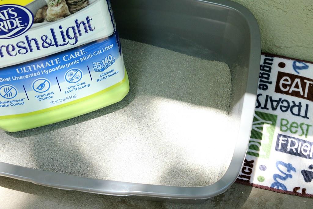 Easy and Cheap Cat Litter Box #LitterforGood