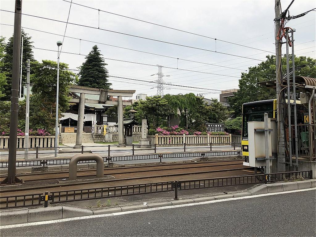 20180502_TokyoSakuraTram (21)