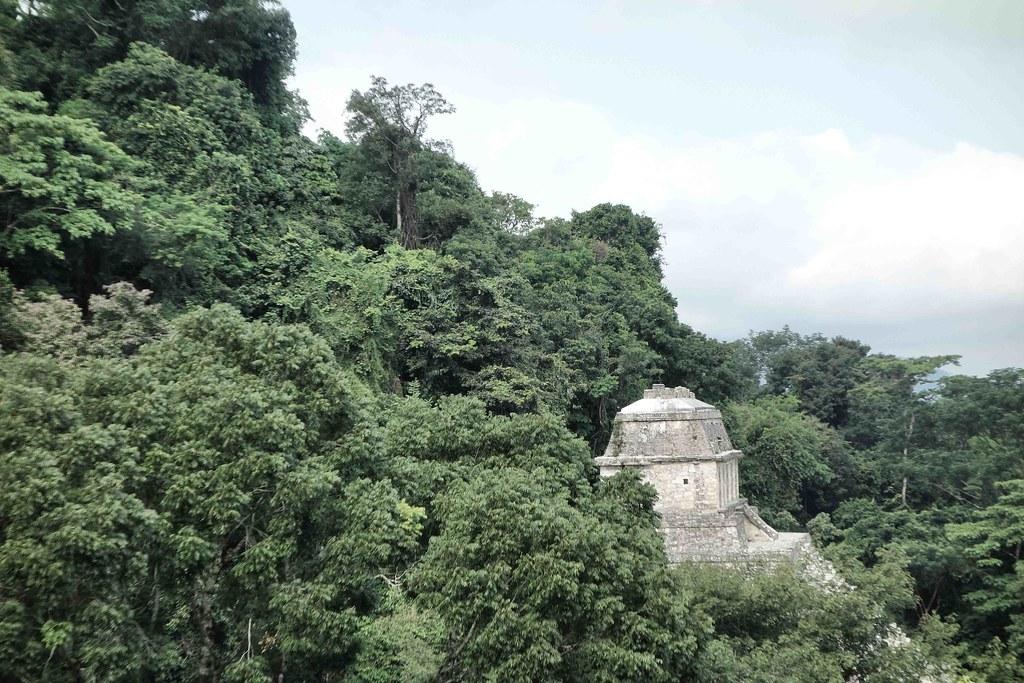 Palenque - Pyramide 7