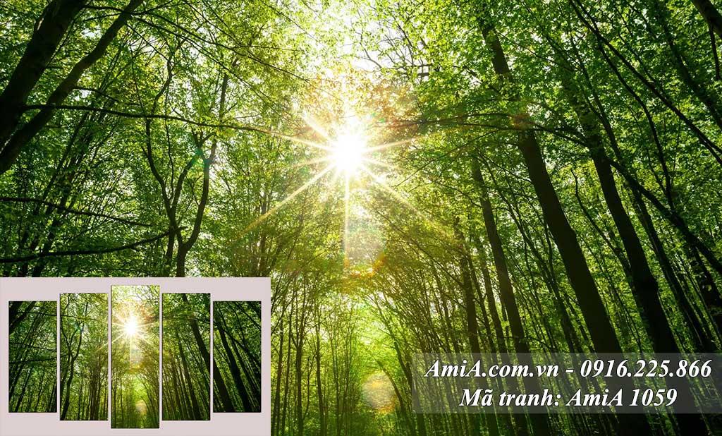 Tranh phong cảnh đẹp mặt trời mọc trong rừng trúc