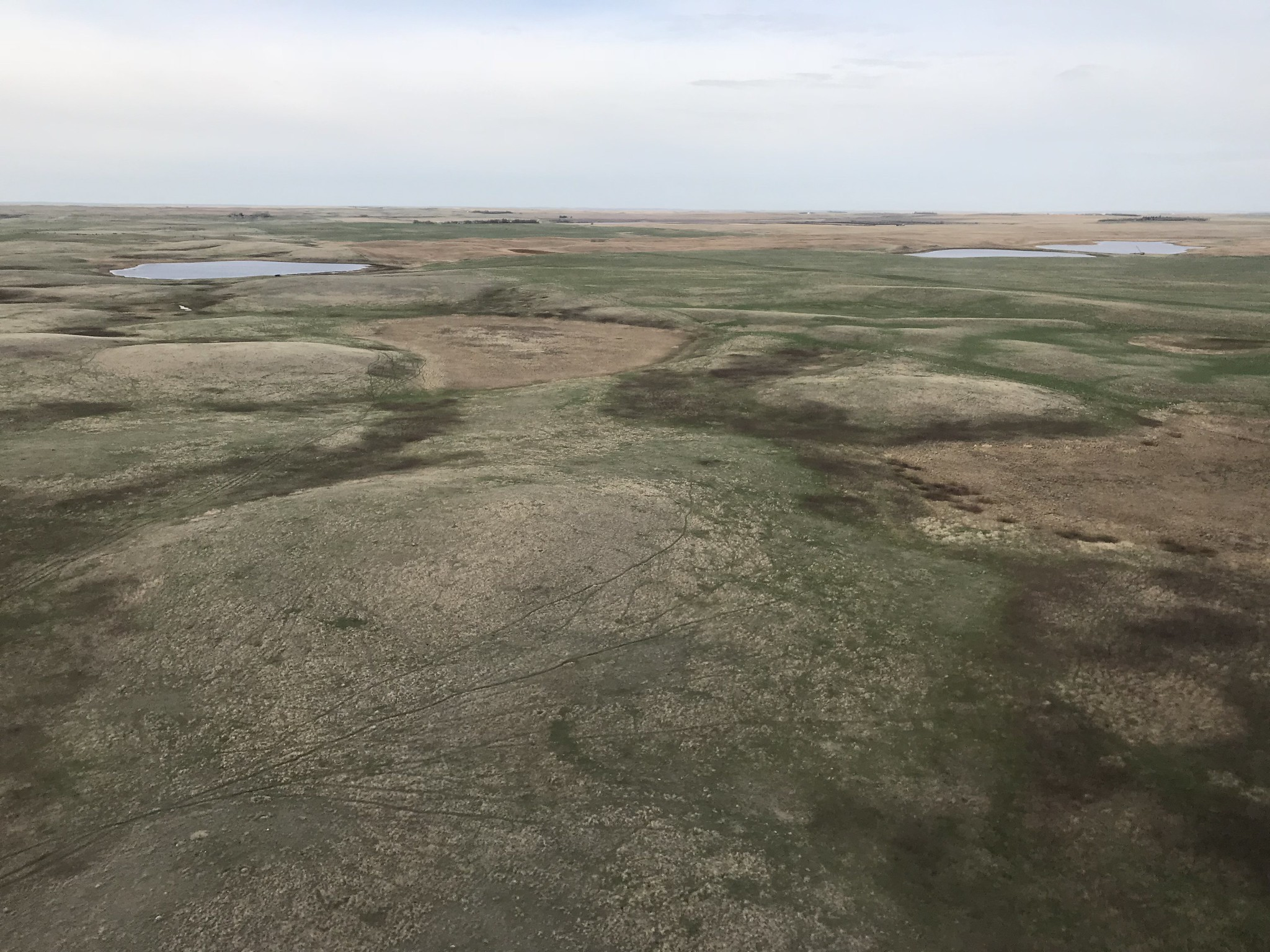 Most seasonal and all temporary and ephemeral wetlands are dry, Many semi-permanent wetlands remain in good condition. USFWS