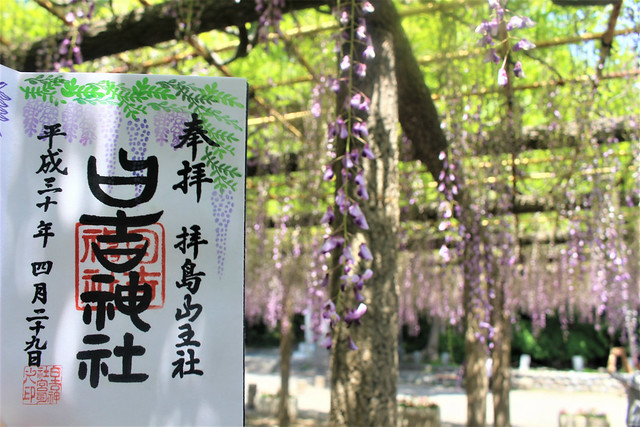 haijimahiyoshi-gosyuin04027
