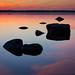 Golden Reflections by Mikko Manner